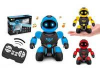 R/C Robot(3C)