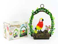 S/C Dance Parrot