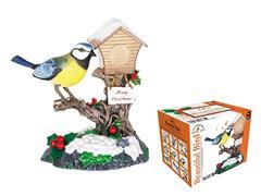 S/C Bird toys