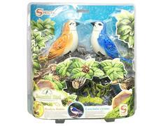 S/C Bird(3S) toys